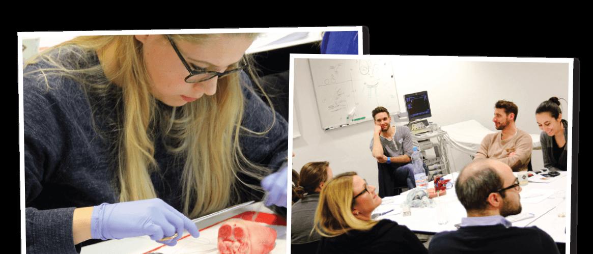 Medizinische Weiterbildung im Medizinischen Aus- und Weiterbildungszentrum Wien