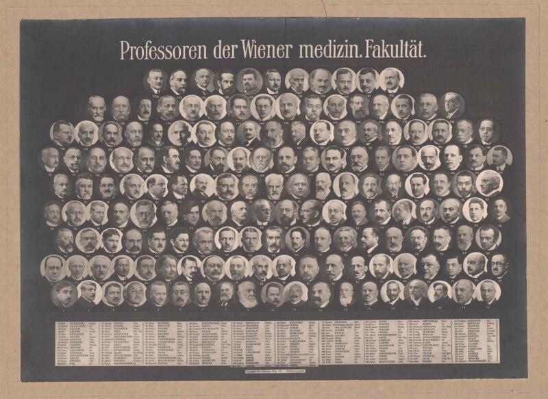 Professoren der MedUni Wien